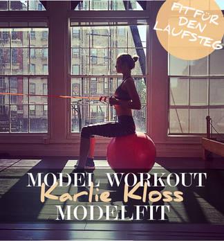 Model Workout: Modelfit